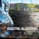 Electronic Blues Foundation - Digital Bluesman